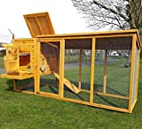 COCOON CHICKEN COOP HEN HOUSE POULTRY ARK NEST BOX NEW - LARGE COOP WITH INNOVATIVE LOCKING MECHANISM - PERSPEX WINDOWS - REAR VENT HOLES - CLEANING TRAY - SECURE NEST BOX FLOOR (NO SHIPING TO NORTHERN IRELAND, ISLANDS, SCOTTISH HIGHLANDS)