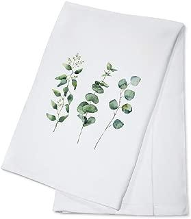 Watercolor Eucalyptus Branches Illustration A-91498 (100% Cotton Kitchen Towel)
