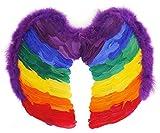 INCLUYE ALAS DE PLUMAS MULTICOLORIDAS ARCO IRIS TAMAÑO DE ALA 50 CM PERFECTO PARA FIESTAS Y CELEBRACIONES LGBT ILOVEFANCYDRESS