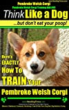 Pembroke Welsh Corgi, Pembroke Welsh Corgi Training AAA AKC Think Like a Dog But Don't Eat Your Poop! | Pembroke Welsh Corgi Breed Expert Training: EXACTLY How to TRAIN Pembroke Your Welsh Corgi