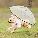 dog umbrella and leash, easy view ransparent