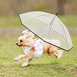 Dog Umbrella With Leash for Small Dogs