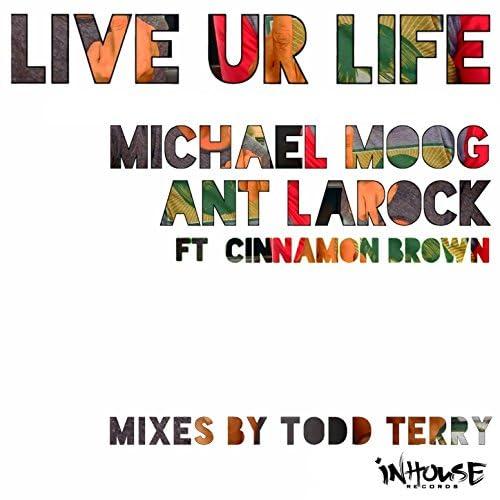 ANT LaROCK & Michael Moog feat. Cinnamon Brown