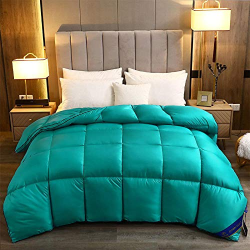 Hahaemall Winter duvet White goose down winter duvet thickened warm quilt Anti-dust mite & Feather-proof Fabric, All Season-F_180x220cm-3000g