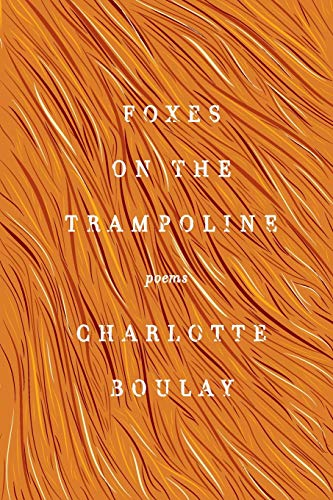 Foxes on the Trampol