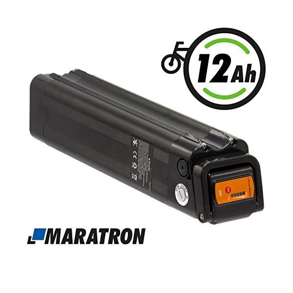 51UyCU GOoL. SS600  - Maratron Komplettset: Akku für E-Bike Pedelec 24V (25,9V) 12Ah 288Wh in schwarz für u.a. Phylion,MiFa, Rex, Prophete