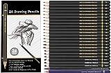 Definite Graphite Sketch Drawing Pencils-(19 Pencils); Charcoal Pencils - Hard, Medium and Soft (3 Pencils); 1 Woodless Graphite Pencil- 6B and 1 Sketch Eraser Pencil (Pack of 24)
