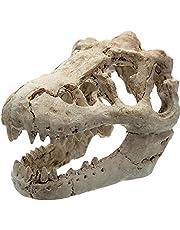 Onsinic 1 szt. żywica dinozaur czaszka ozdoba akwarium ryba ukrywanie jaskinia ryby zbiornik wspinaczka schronienie fotografia rekwizyty narzędzie do nauki 8,5 x 5,5 x 4,5 cm