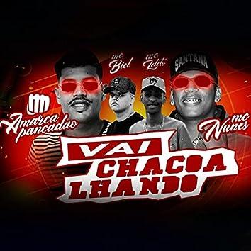Vai Chacoalhando (feat. Mc Biel & Mc Leléto) (Brega Funk)