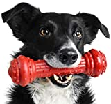 Pet Qwerks Bongo BarkBone Prime Rib Chew Toy - Tough Indestructible Extreme Power