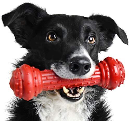 Pet Qwerks Bongo BarkBone Prime Brinquedo de mastigar canelado – Resistente e indestrutível, projetado para os mastigadores mais agressivos | Feito nos EUA – Para cães médios, vermelho