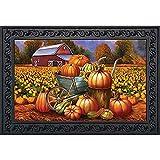 Impresión De Felpudos Pumpkin Farm Fall Felpudo Carro Otoño...