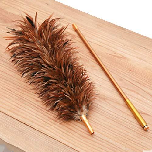 Colector de polvo limpio, colector de polvo de plumas naturales, retráctil y ajustable, con varilla retráctil de 150 cm, apto para persianas/hair area 40cm total length 150cm