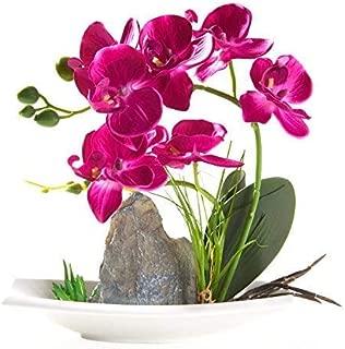 Imiee Artificial Phaleanopsis Arrangement with Vase Decorative Orchid Flower Bonsai (Purple)