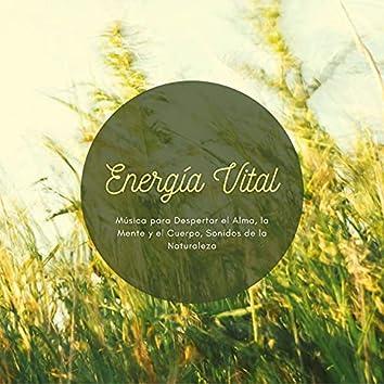 Energía Vital: Música para Despertar el Alma, la Mente y el Cuerpo, Sonidos de la Naturaleza