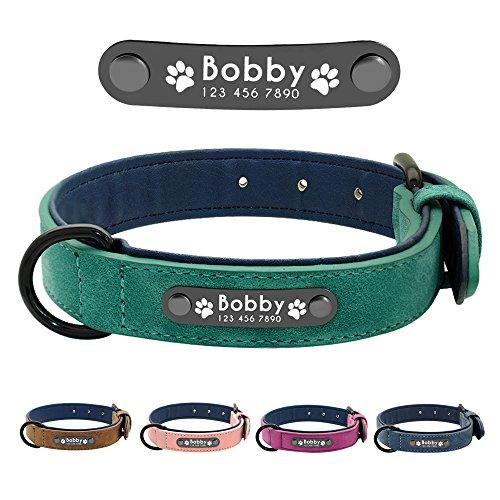 Didog - Collar de piel suave acolchada personalizable para perro, chapa de nombre, anilla en D, collar grabado para perro, tamaños pequeño, mediano y grande