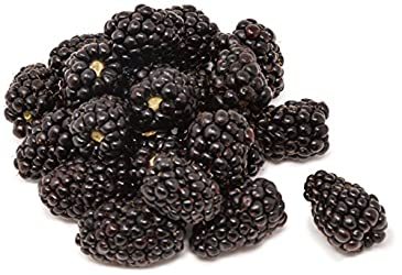 Amae Driscoll Blackberry, 170g