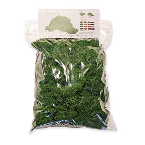 Ortisgreen Liquen Preservado Premium 500 gr. Color Verde Bosque. Uso: Cuadros Vegetales Preservados, Diorama, Presepio, Modelismo. Musgo Preservado.