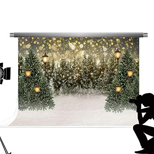 Kate Backdrops Fondo de fotografía de Navidad 3x2m Fondos de escena de nieve de Navidad Árbol de Navidad Linterna