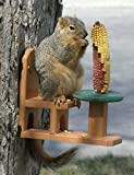 Songbird Essentials Recycled Poly Squirrel Feeder Table & Chair SE526