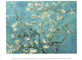 (11x14) Vincent van Gogh Almond Blossom Branch of an Almond Tree in Blossom 1890 Art Print Poster