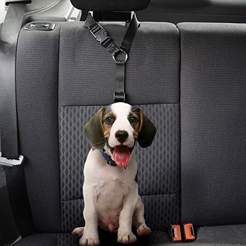 Laduup Auto Pet Seguridad – Dog Cuerda de Seguridad Perro Correa ...