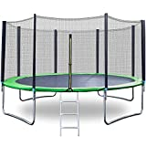QCen Trampoline 12Ft Recreational Trampolines with Safety Enclosure Net, 653 LBS Weight Capacity for Kids Adults Outdoor with Spring Pad Waterproof Jump Mat & Ladder