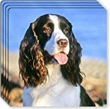 Canine Designs English Springer Spaniel Rubber Coasters Set of 4