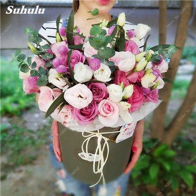 Mixed Seeds Rose, 200 Pcs Rare Bonsai Fleurs Rose, mélanger les couleurs Croissance naturelle Plante en pot pour le jardin Suppies Représentant Amour 14
