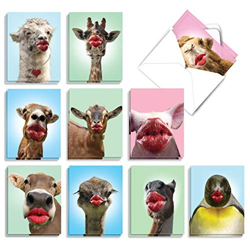 The Best Card Company - 20 Assorted Blank Note Cards Bulk (4 x 5.12 Inch) - Fun Animal All Occasion Cards (10 Designs, 2 Each) - Wild Kisses AM9280OCB-B2x10