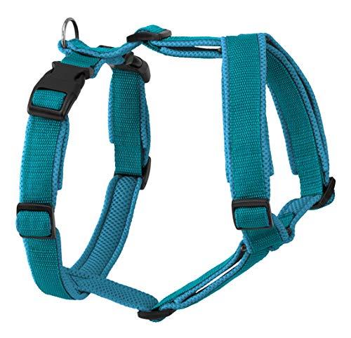 Greyhound Safe it Hundezubehör, Hundegeschirr, Hundeführgeschirr gepolstert - 4 Größen, 5 x 6 Farbkombinationen, 6-Fach Größenverstellbar (S, Petrol/Türkis)
