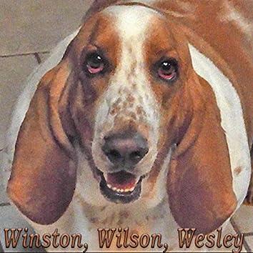 Winston, Wilson, Wesley