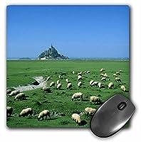 3drose LLC 8x 8x 0.25インチマウスパッド、David Barnes ( MP _ 81482_ 1)