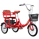 zyy 16' 1 Velocidades 3 Ruedas Triciclo Bicicleta de Triciclo...