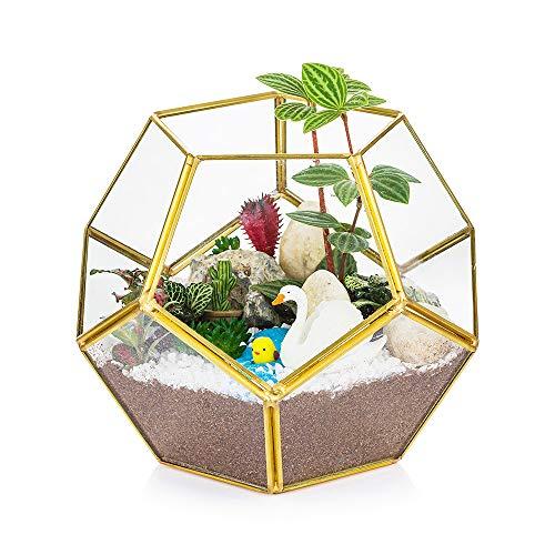 Terrarium Glas Gold Ökosystem Im Glas Geometrisch Blumentopf Mini Gewächshaus Fur Bonsai Fleischfressende Pflanzen Led Kerze Dekoration Wohnung Moder Übertopf Fur Sukkulenten Künstlich Moos Insekten
