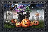 """Briarwood Lane Spooky Kittens Halloween Doormat Jack o'Lanterns Cats Indoor/Outdoor 18"""" x 30"""""""