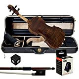 Paititi 4/4 Full Size PTVNSS100 Premium Hand Carved One-Piece Back Ebony Fitted Violin Outfit with Case, Bow, String, Tuner, Mute and Rosin