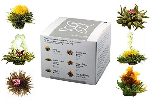 Feelino Edle 6er-Mischbox -Teeblumen Feelino White in toller Probier- und Geschenkbox mit 6 verschiedenen Weißtee-Teerosen, einzeln vakuumverpackt, 1er Pack