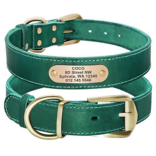 Didog - Collares para Perro de Piel auténtica con Placa de Nombre grabada, Collar de Perro de Cuero Suave Personalizado con Etiqueta de identificación Personalizada