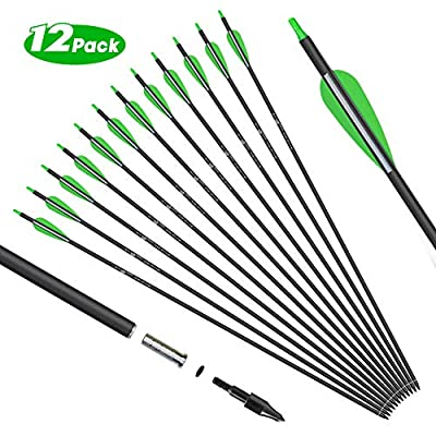 KESHES Archery Carbon Hunting Arrows for Compound & Recurve Bows - 30 inch Youth Kids and Adult Target Practice Bow Arrow - Removable Nock & Tips Points (12 Pack) (Green)