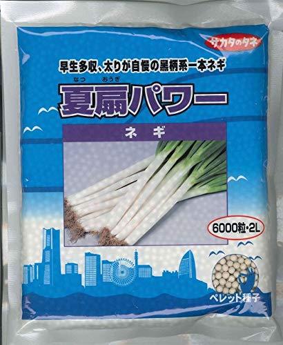 サカタのタネ 野菜の種 ネギ 夏扇パワー ペレット種子(2L) 6000粒