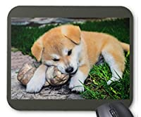 秋田犬の仔犬のマウスパッド:フォトパッド(世界の犬シリーズ) (C)