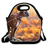 Borsa termica per il pranzo Lunchbox Bright Pink Zebra strisce impermeabile Cooler Warm borse riutilizzabili Tote box one size Boxer Dog10
