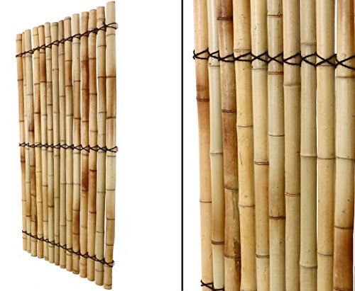 Bambus Wandelement Apas15 180x90cm aus gelblichen halben Bambusrohre mit 6 bis 8cm - Sichtschutzzaun Sichtschutzzäune Blickschutz aus Bambus Sichtschutzwand Sichtschutzwände Raumabtrennung
