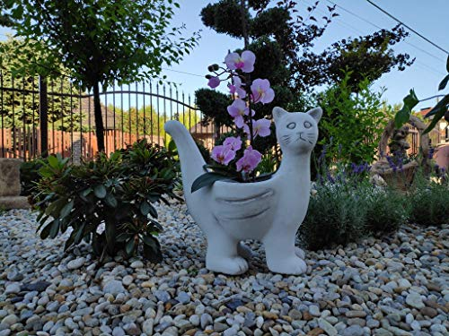 Unusual garden ornament Flower pot Pete the Cat bowl made of cast stone