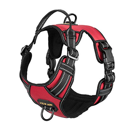 4XPAW Dog Harness with Padded Handle,Reflective in Night,Nylon Oxford Mesh Soft Padding Lining, No-Pull Metal D Ring,Quick Release Buckle (L (Chest 20'-36'), Red)