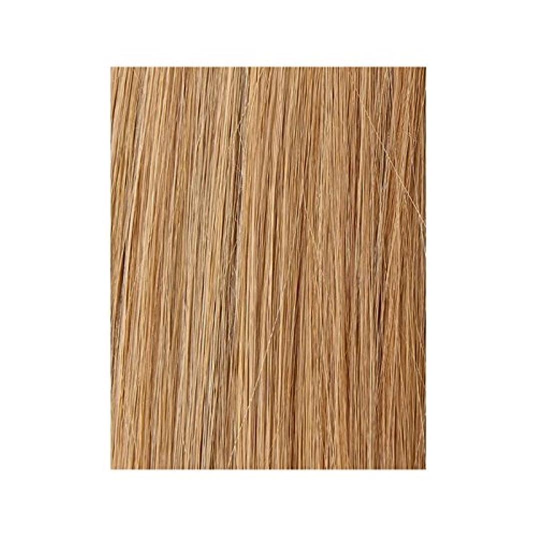 ミネラルソーダ水硬い美しさは、100%レミー色見本ヘアエクステンションを作品 - ブロンド日焼けした10/14/16 x2 - Beauty Works 100% Remy Colour Swatch Hair Extension - Tanned Blonde 10/14/16 (Pack of 2) [並行輸入品]