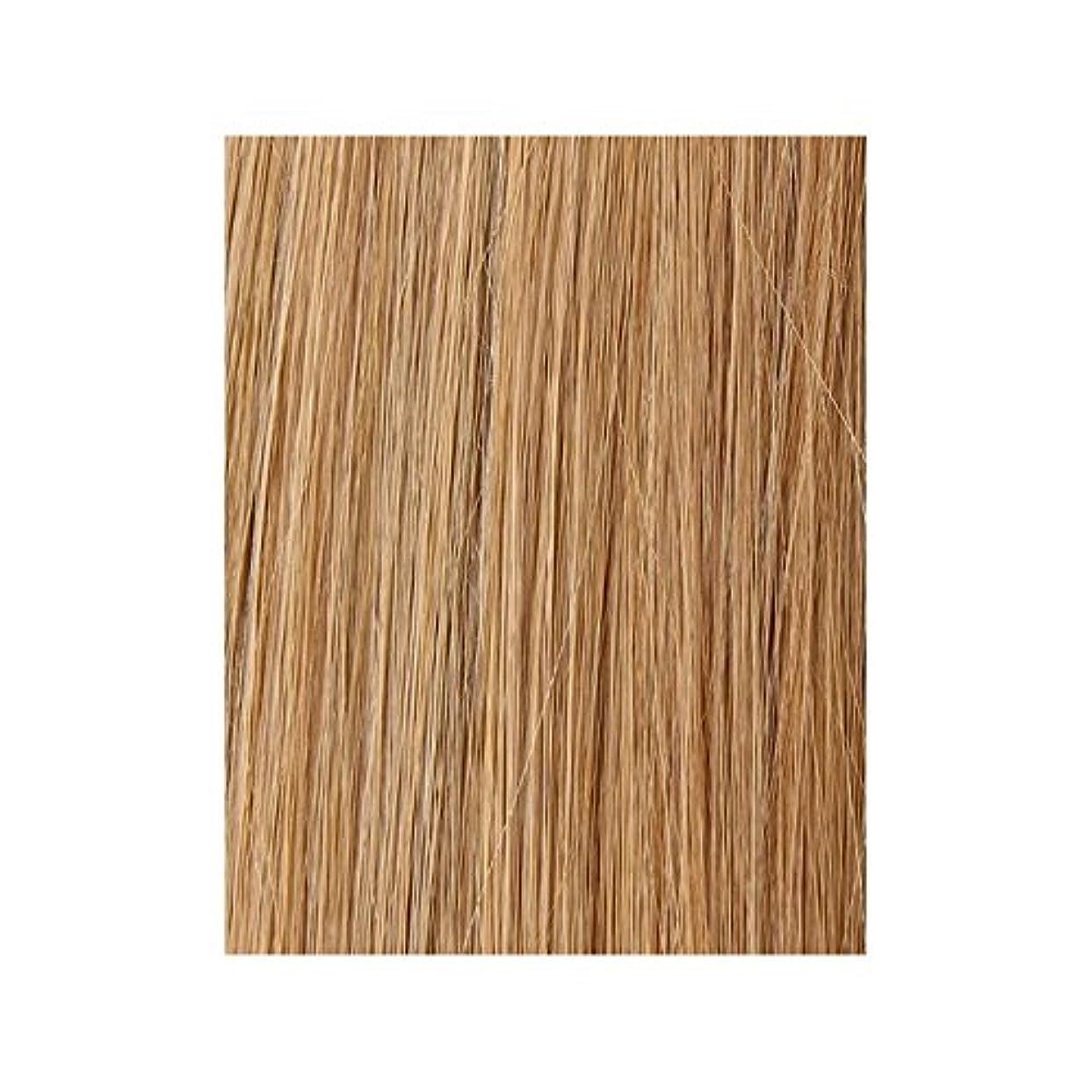 息子転倒ナサニエル区美しさは、100%レミー色見本ヘアエクステンションを作品 - ブロンド日焼けした10/14/16 x2 - Beauty Works 100% Remy Colour Swatch Hair Extension - Tanned Blonde 10/14/16 (Pack of 2) [並行輸入品]