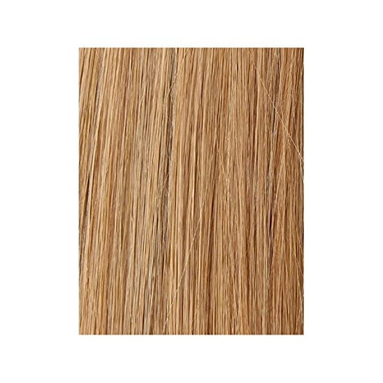 ガチョウ規則性逃げる美しさは、100%レミー色見本ヘアエクステンションを作品 - ブロンド日焼けした10/14/16 x2 - Beauty Works 100% Remy Colour Swatch Hair Extension - Tanned Blonde 10/14/16 (Pack of 2) [並行輸入品]