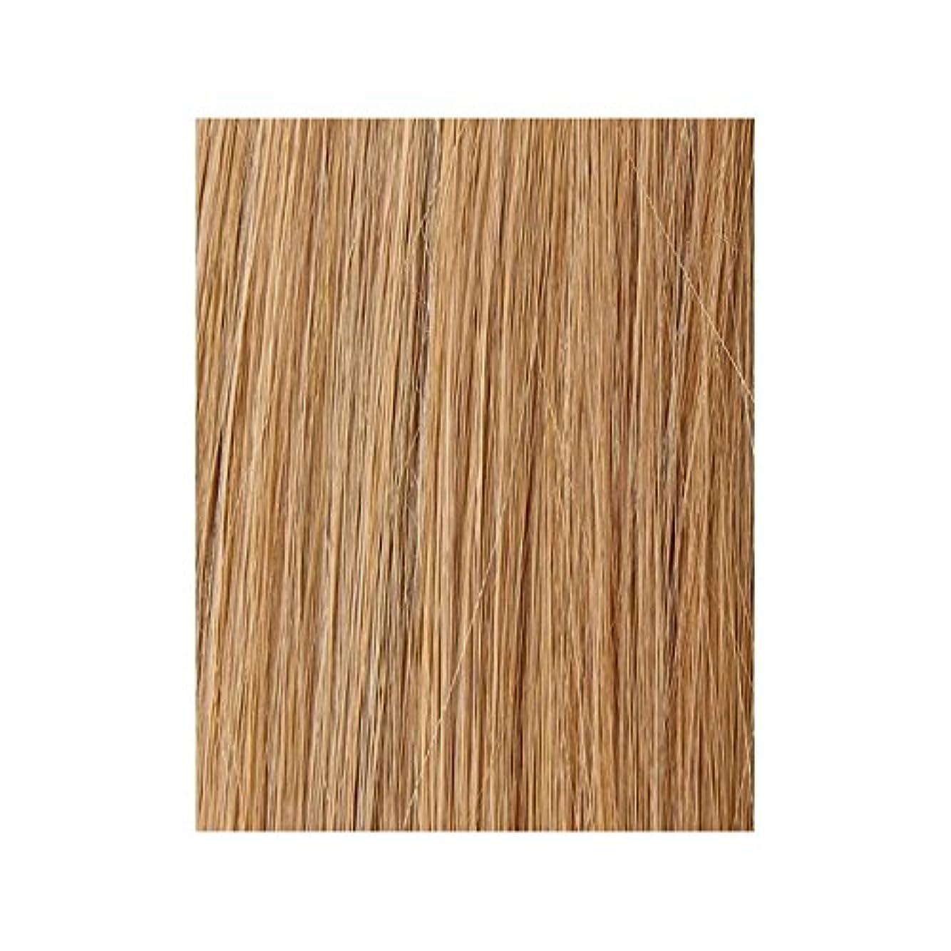 実現可能以降鍔美しさは、100%レミー色見本ヘアエクステンションを作品 - ブロンド日焼けした10/14/16 x4 - Beauty Works 100% Remy Colour Swatch Hair Extension - Tanned Blonde 10/14/16 (Pack of 4) [並行輸入品]